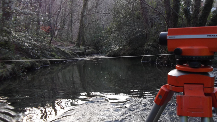 Flow Surveys