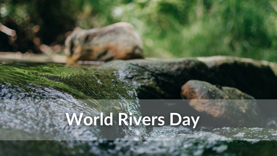 """Image of river flowing with the words """"World Rivers Day"""" over it"""