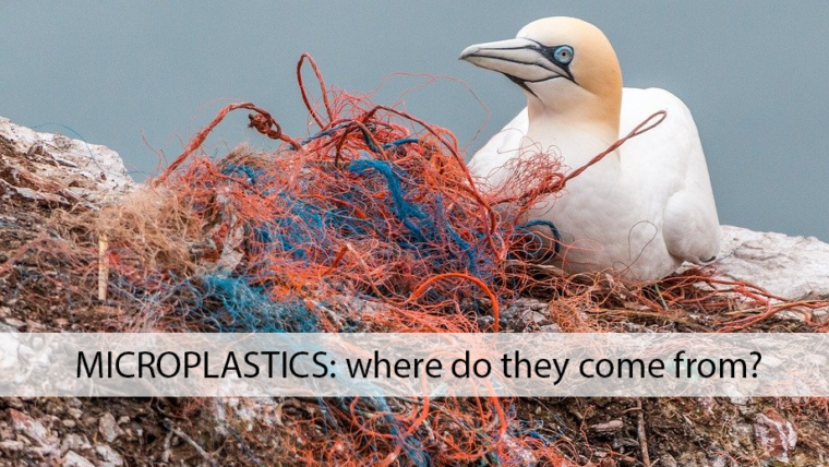 Microplastics: where do they come from?