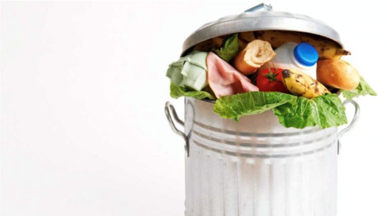 Environmental Issues in the Spotlight: Food waste
